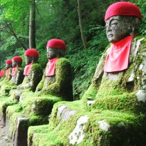 Search Best Hotel at Nikko, Japan. 日光のホテルを検索する